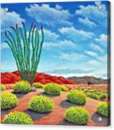 Desert Landing Acrylic Print