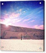 Desert Stars Acrylic Print