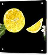 Digital Citrus Acrylic Print