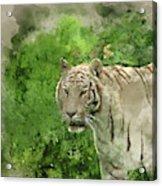 Digital Watercolor Painting Of Beautiful Portrait Image Of Hybri Acrylic Print