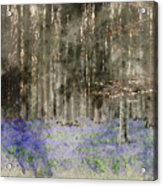 Digital Watercolor Painting Of Stunning Landscape Of Bluebell Fo Acrylic Print