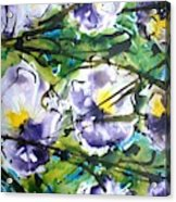 Divineblooms22040 Acrylic Print