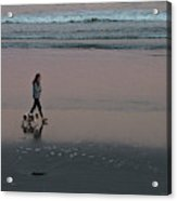Dog Walking Along The Beach Acrylic Print