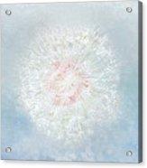 Dream A Little Dream In Sparkle Acrylic Print