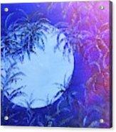 Dream By The Tropical Moon Acrylic Print