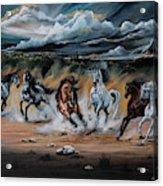 Dream Horse Series 125 - Flat Bottom River Wild Horse Herd Acrylic Print