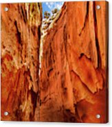 Dry Gulch Canyon Acrylic Print