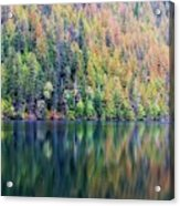 Echo Lake Autumn Shore Acrylic Print
