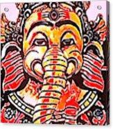 Elephant Face Acrylic Print