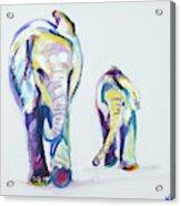 Elephants Side By Side Acrylic Print