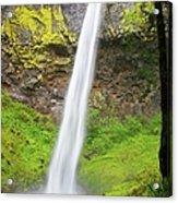 Elowah Falls In Columbia River Gorge Acrylic Print