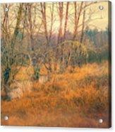 Evening Mist Acrylic Print