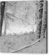 Evening Snow Acrylic Print