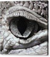 Eye Of Alligator Acrylic Print
