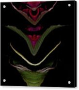 Faerie Sconce Acrylic Print