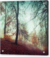 Fall Feeling Acrylic Print