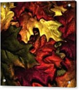 Fall Is On The Ground Acrylic Print