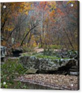 Fall On The Kings River Acrylic Print