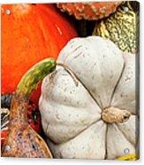 Fall Season Squash And Pumpkins Acrylic Print