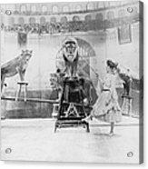 Female Lion Tamer Performing B&w Acrylic Print