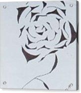 Flower Opening Acrylic Print