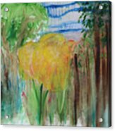 Flowers In A Forest Acrylic Print