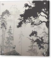 Foggy Landscape With Silhouette Of Acrylic Print