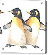 Four Penguins Acrylic Print