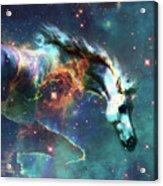 Free Of The Carousel II Acrylic Print