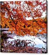 French Creek 15-107 Acrylic Print