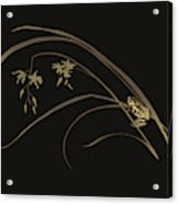 Frog And Orchid Acrylic Print