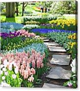 Garden Flowers  53 Xxxl Acrylic Print