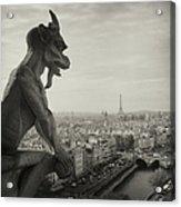 Gargoyle Of Notre Dame Acrylic Print