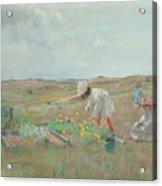 Gathering Flowers, Shinnecock, Long Island, 1897 Acrylic Print