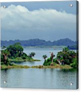 Gatun Lake Islands Acrylic Print