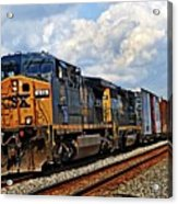 Going On A Train Ride Acrylic Print