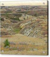 Golden Dakota Prairie Reverie Acrylic Print