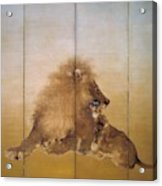 Golden Lion - Original Color Edition Acrylic Print
