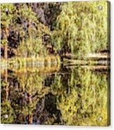 Golden Shevlin Park Acrylic Print