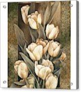 Golden Tulips    Acrylic Print