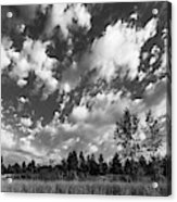 Good Harbor Shoreline Black And White Acrylic Print