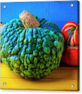 Graphic Autumn Pumpkins And Gourds Acrylic Print