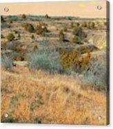 Grassy Ridge Reverie Acrylic Print