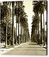 Grayscale Image Of Beverly Hills Acrylic Print