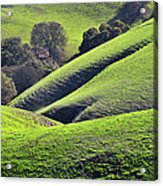 Green Rolling Hills Of Central Acrylic Print