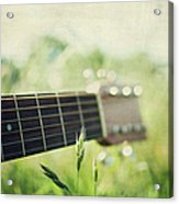 Guitar In Country Meadow Acrylic Print