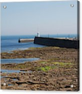 harbour at Seahouses on hazy summer day Acrylic Print