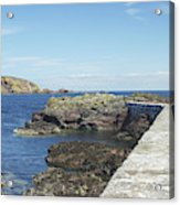 harbour wall and cliffs at St. Abbs, Berwickshire Acrylic Print
