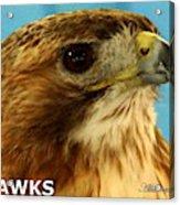 Hawks Mascot 3 Acrylic Print