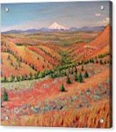 High Desert View - Mt. Hood Acrylic Print